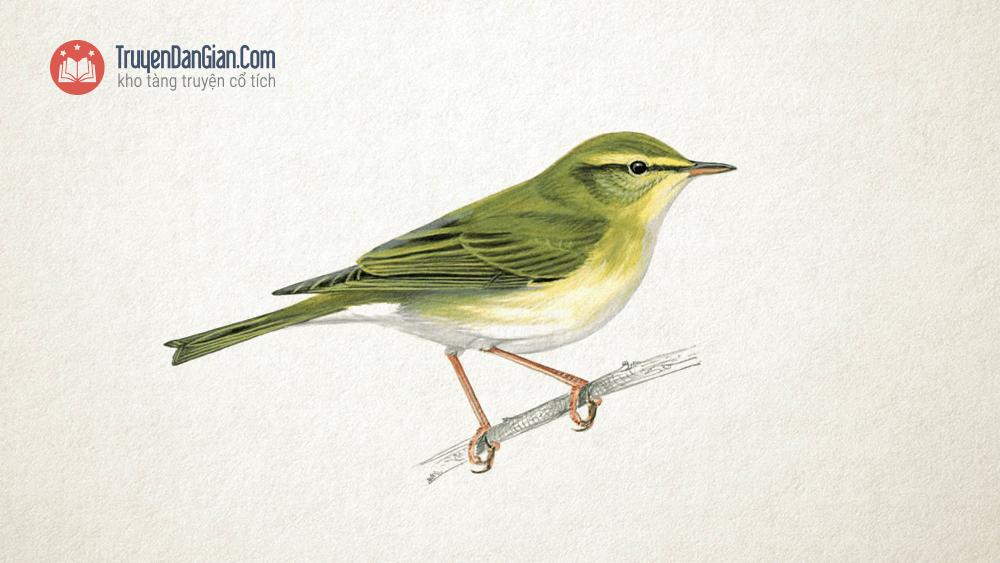 Sáo, Sẻ và Chích Bông - Chuyện kể về ba con chim