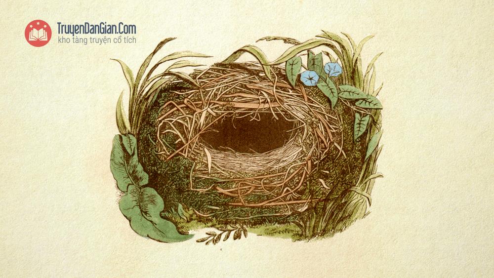 Tổ chim Chích Bông
